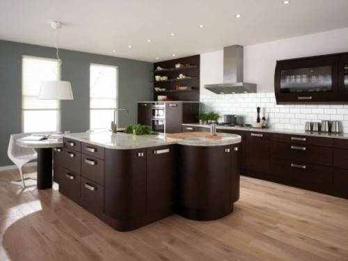 2012 Contemporary Kitchen Home Designs 500x375 Distribution Zone in the Kitchen