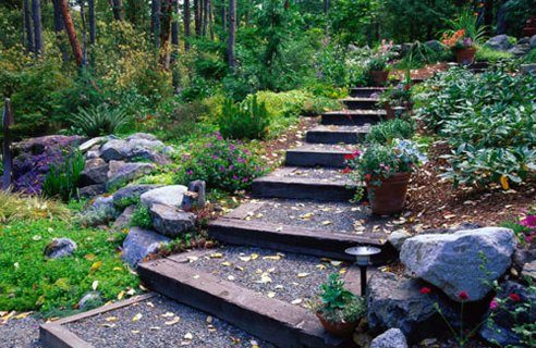 Best Pathway design ideas