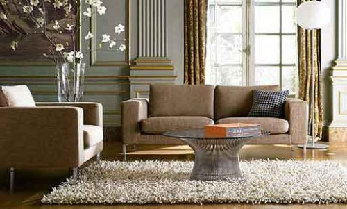 Elegant Living Room with Rug Decorating Ideas