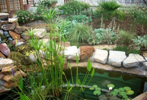Green Fishpond Design Ideas 500x343 Various Fishpond Design Ideas
