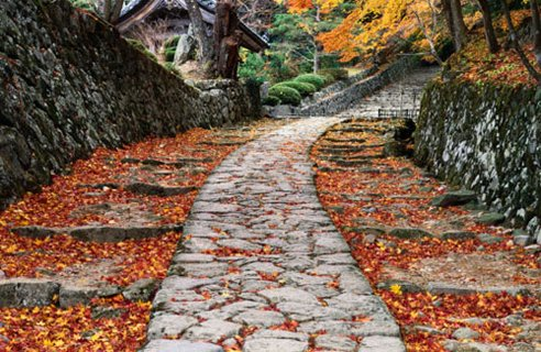 Japanese Pathway design ideas Amazing Garden Pathways Decorating Ideas