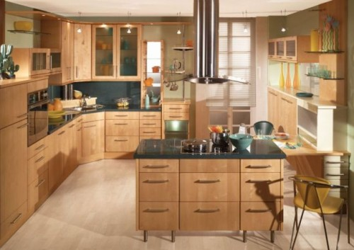 Kitchen for Modern Styles in 2012