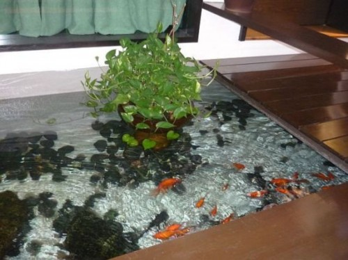 fishpond design ideas, garden, fishpond