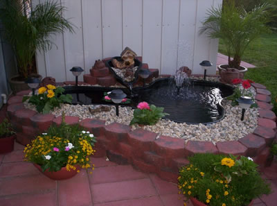 Minimalist Fishpond Design Ideas