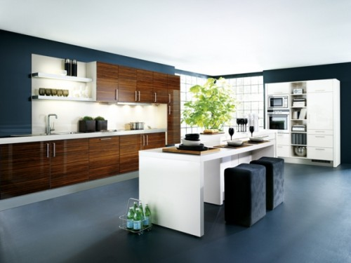 Modern Kitchen Design 2013